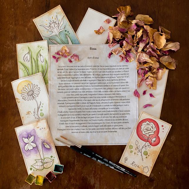 """Progetto editoriale """"L'essenza dei fiori"""""""